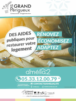 Affiche Amélia 2