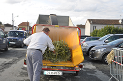 Collecte sapins broyage (archives)