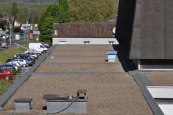 Des rûches sur le toit du CRD